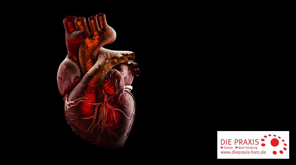 20171110--Herzkrankheiten